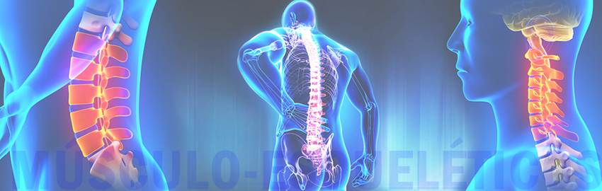 Vídeos divulgativos sobre los Trastornos Músculo-Esqueléticos